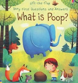 Lift The Flap Very First Questions And Answers What Is Poop Farmyard Books Usborne Books More Independent Consultant